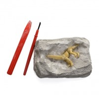 化石大發現探險